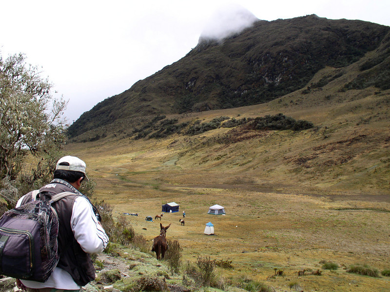 "As we descend into the grassy paramo valley, camp is already being established. <div id=""caption_tourlink"" align=""right"">[photo © guide Rose Ann Rowlett]</div>"