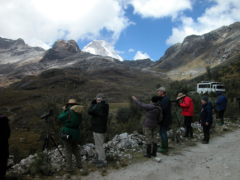 "Is it up or down? (birding below Yanapaqcha, our bus in the distance)  <div id=""caption_tourlink"" align=""right"">[photo © guide Richard Webster]</div>"