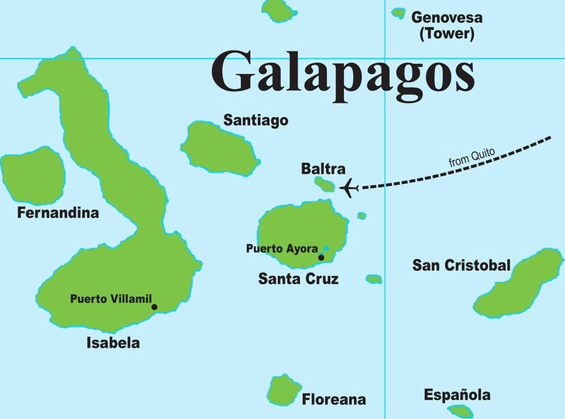 """Our Field Guides Galapagos itinerary hits all possible highlights in the islands (though the Mangrove Finches were sadly off limits for a few tours this year), and the above map identifies the various islands mentioned by guide Megan Crewe in the picture captions that follow. If you'd like to see the images in slideshow mode, just click the """"Slideshow"""" button toward the upper right of this page. Once in slideshow mode, you can choose your viewing speed (Slow-Med-Fast) by moving your mouse to the upper left of the screen and clicking your preference."""