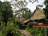 "Yanamono Lodge <div id=""caption_tourlink"" align=""right""> [photo © guide Bret Whitney]</div>"