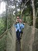 "Canopy walkway <div id=""caption_tourlink"" align=""right""> [photo © guide Rose Ann Rowlett]</div>"