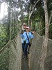 "Canopy walkway <div id=""caption_tourlink"" align=""right""> [photo © guide Rose Ann Rowlett]</div>"