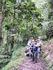 """We then fly to Loja and spend a week in the south, birding beautiful Podocarpus National Park, which encompasses an expanse from stunted treeline forest down through montane cloud forest to upper tropical forest at the eastern base of the Andes. Here, our group birds on the trail along the Rio Bombuscaro, home of the endemic White-necked Parakeet. <div id=""""caption_tourlink"""" align=""""right""""> [photo © guide Rose Ann Rowlett]</div>"""