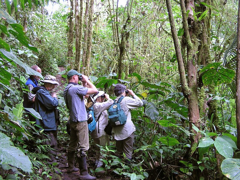 """Group in Tandayapa Valley <br><div id=""""caption_tourlink"""" align=""""right""""> [photo © participant Jason Leifester]</div>"""
