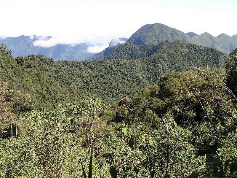 "View from Yanacocha <br><div id=""caption_tourlink"" align=""right""> [photo © participant Jason Leifester]</div>"