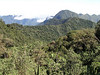 "View from Yanacocha <br><div id=""caption_tourlink"" align=""right""> [photo © participant Jason Leifester]</div>"