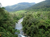 """The rushing Kosnipata River through the Manu Andes <div id=""""caption_tourlink"""" align=""""right""""><br>[photo © guide Rose Ann Rowlett]</div>"""