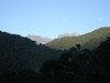 """Early sunlight on the highest mountains of Manu; based at 4500' we bird up and down the road through Manu National Park. <div id=""""caption_tourlink"""" align=""""right""""><br>[photo © guide Rose Ann Rowlett]</div>"""