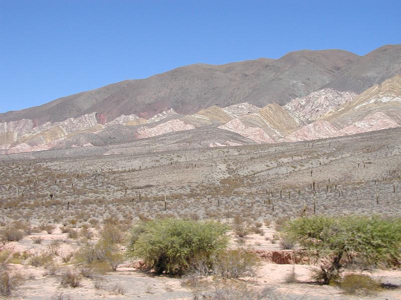 """Northwest Argentina<div id=""""caption_tourlink"""" align=""""right""""> [photo © guide Dave Stejskal]</div>"""