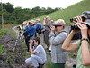 """Group admiring a handsome Pinto's spinetail, wondering how anyone could have suggested calling it """"Plain"""" Spinetail! <div id=""""caption_tourlink"""" align=""""right""""> [photo © guide Bret Whitney]</div>"""