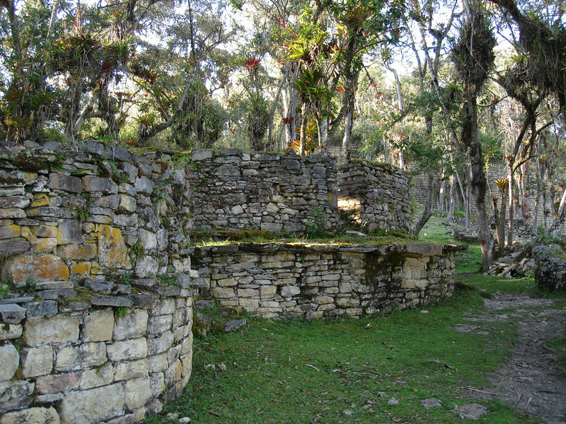 "The interior of Kuelap, partially reclaimed by forest, contained more than 400 circular homes, some with elaborate stone friezes typical of the Chachapoya. There were also four square buildings and several stone friezes more typical of the Incas. <div id=""caption_tourlink"" align=""right""><br>[photo © Rose Ann Rowlett]</div>"