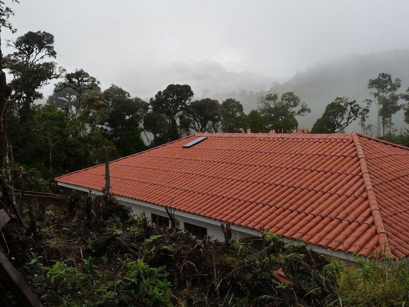 "Then it's on to the new ECOAN lodge at Abra Patricia: Owlet Lodge (named for the Long-whiskered Owlet, which we've now heard just down the the trail from our bungalows!). It is set right in the cloud forest near the pass at 7700' (2300m), and we are delighted to be using it. Beyond saving us much commuting time, simply staying right in the habitat will mean the possibility of new birds every minute of the day, and at night as well! <div id=""caption_tourlink"" align=""right""><br>[photo © Rose Ann Rowlett]</div>"