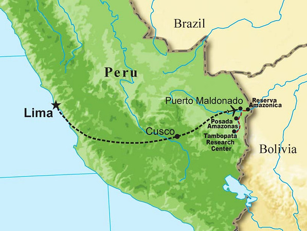 "Here are a few photos from our 2008 <b>Peruvian Rainforests of the Tambopata</b> tour, guided by <b>Rose Ann Rowlett</b>. The map gives you an idea of the destinations covered: our flights to Cusco and Puerto Maldonado, and our boat trips to Reserva Amazonica, Posada Amazonas, and the Tambopata Research Center.  Take a few minutes to look through the images and enjoy!<div id=""caption_tourlink"" align=""right""><br>[photo © Rose Ann Rowlett]</div>"