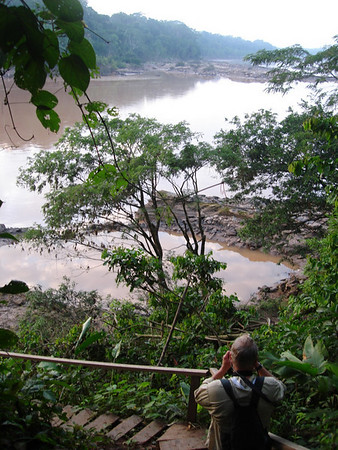 "From the high bank of the Rio Tambopata<div id=""caption_tourlink"" align=""right""><br>[photo © Rose Ann Rowlett]</div>"