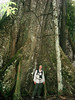 """Participant Bill Eeds gives some size perspective to the buttressed roots of a giant ceiba tree at Posada Amazonas. <div id=""""caption_tourlink"""" align=""""right""""> [photo © guide Rose Ann Rowlett]</div>"""
