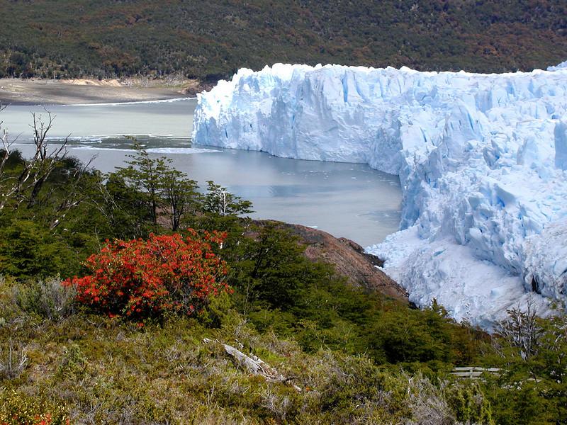 """Perito Moreno Glacier <div id=""""caption_tourlink"""" align=""""right""""> [photo © guide John Rowlett]</div>"""