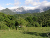 "Serra dos Tucanos/Guapi Assu<div id=""caption_tourlink"" align=""right""><br>[photo © guide Richard Webster]</div>"