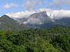 """Serra dos Tucanos/Guapi Assu<div id=""""caption_tourlink"""" align=""""right""""><br>[photo © guide Richard Webster]</div>"""