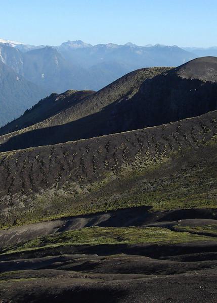 "Puyehue National Park, Old lava    <div id=""caption_tourlink"" align=""right""> [photo © guide Alvaro Jaramillo]</div>"
