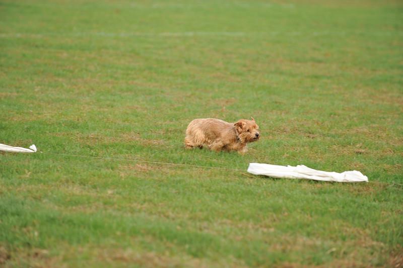 First CAT 10-19-13-514
