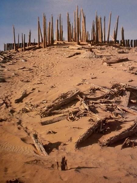 Northern Desert where the Cemetery was found