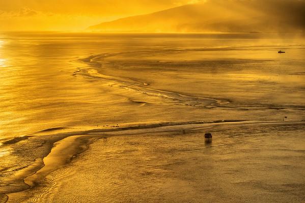 Golden Teahupoo