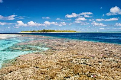 Fakarava Coral Garden