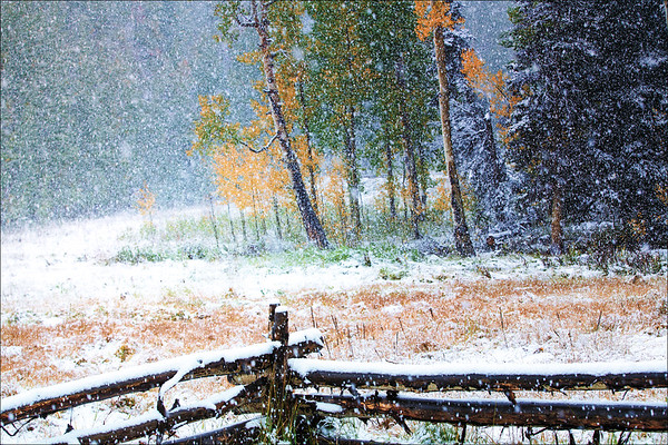COLOR BLURRED BY SNOW