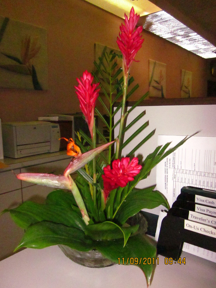 flower arrangement by Nenette