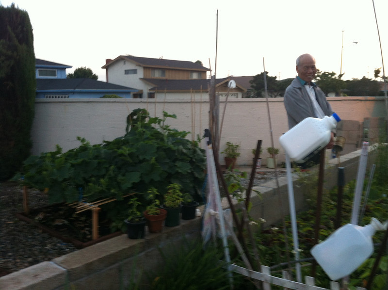 my brother's neighbor..