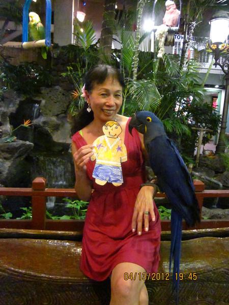 FS visited Bird man