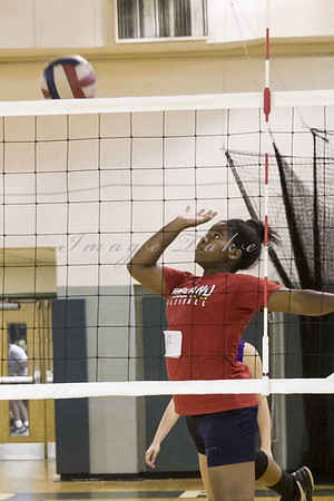 VB Tryouts_0018