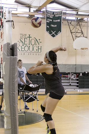 VB Tryouts_0048