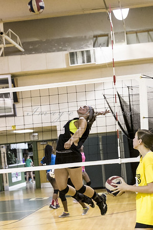VB Tryouts_0015