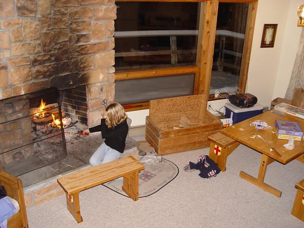 Skiing 2004