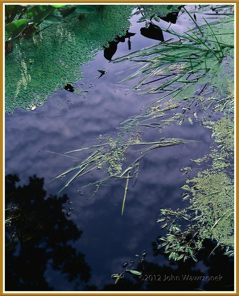 Reflections & Refractions, Landham Brook