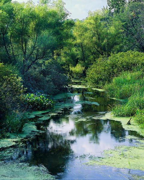 Landham Brook