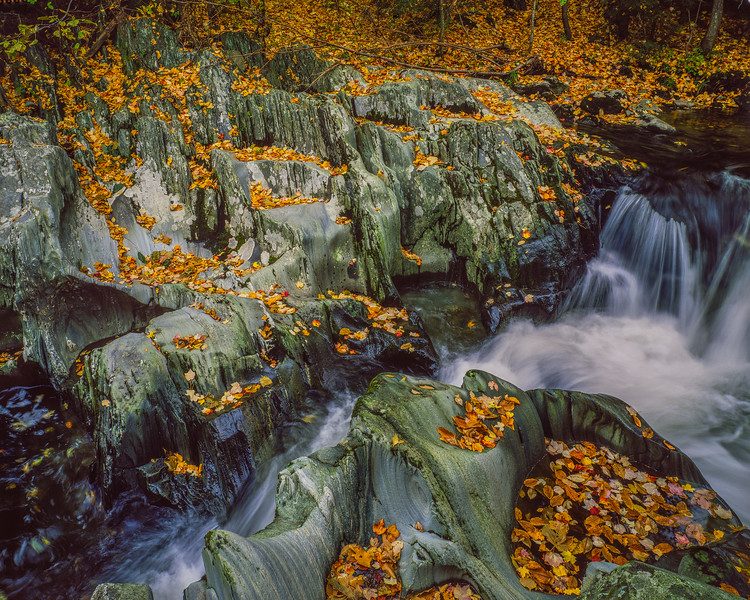 Rocky Stream & Fallen Leaves