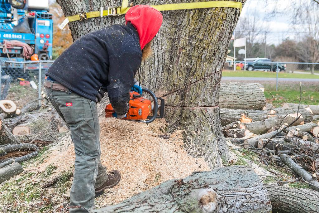 IMAGE: https://photos.smugmug.com/SKY-GUYS-LLC-Tree-Service/i-h68CVV5/0/XL/SkyGuys_0271-XL.jpg