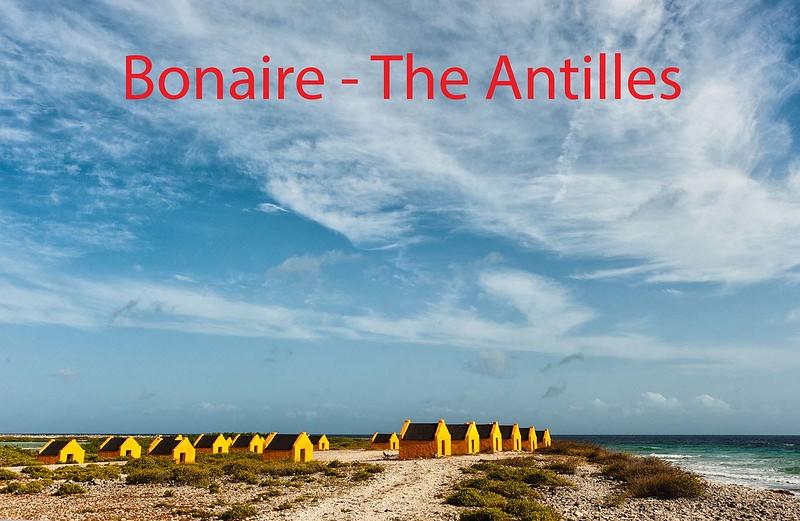 Bonaire-1