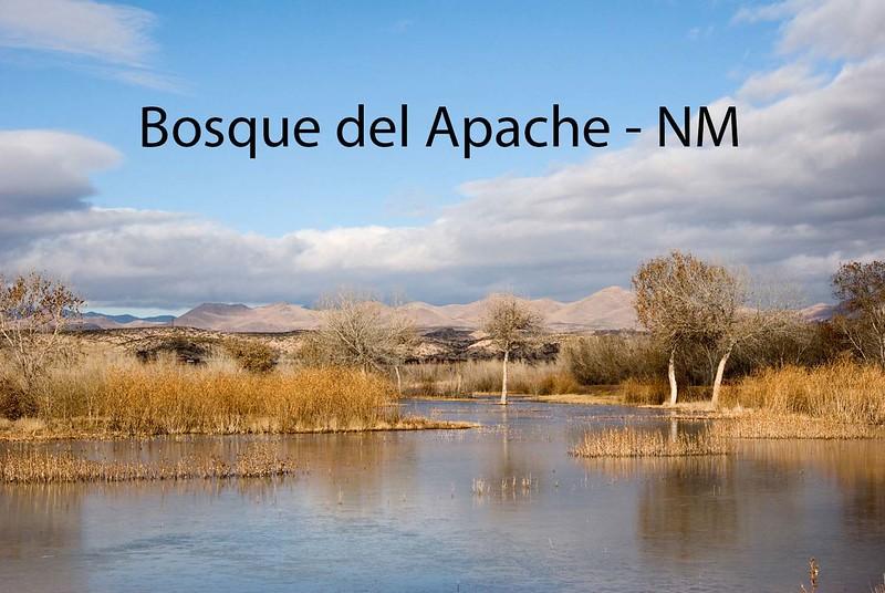 BosquedelApacheNWR-1