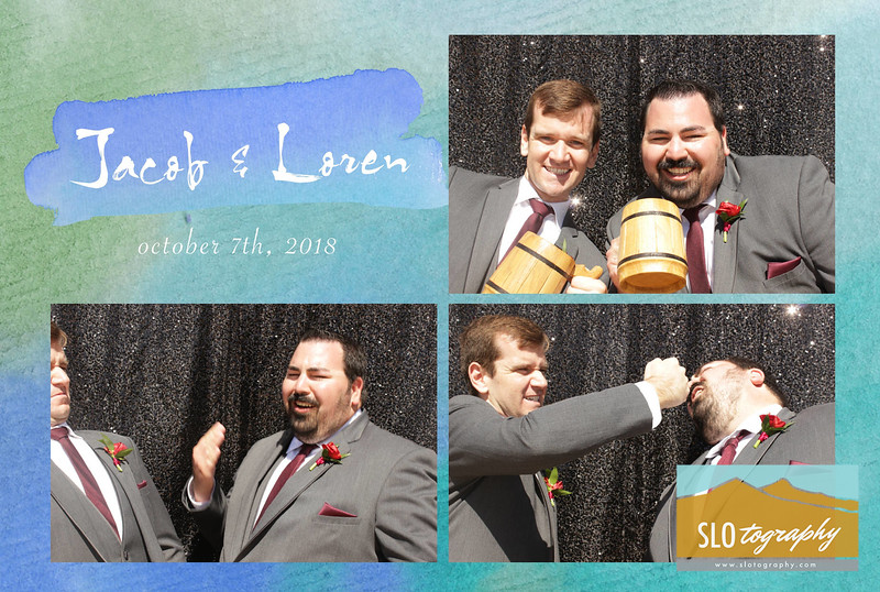 Jacob+Loren ~ Photobooth Collages_001