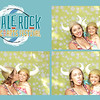 Whale Rock Music & Arts Festival Collages_013