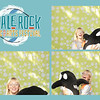 Whale Rock Music & Arts Festival Collages_003