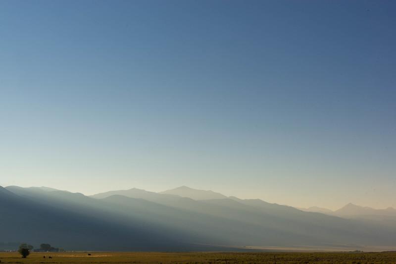 Early morning summer light along 285.