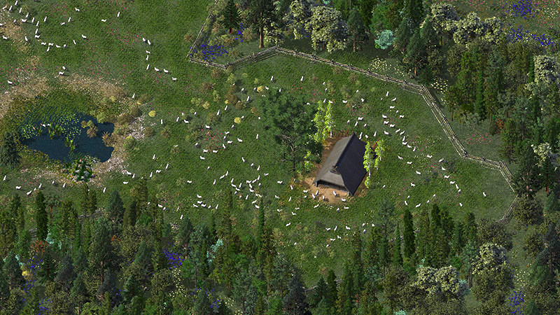 11%20Pasture%20with%20sheep-L.jpg