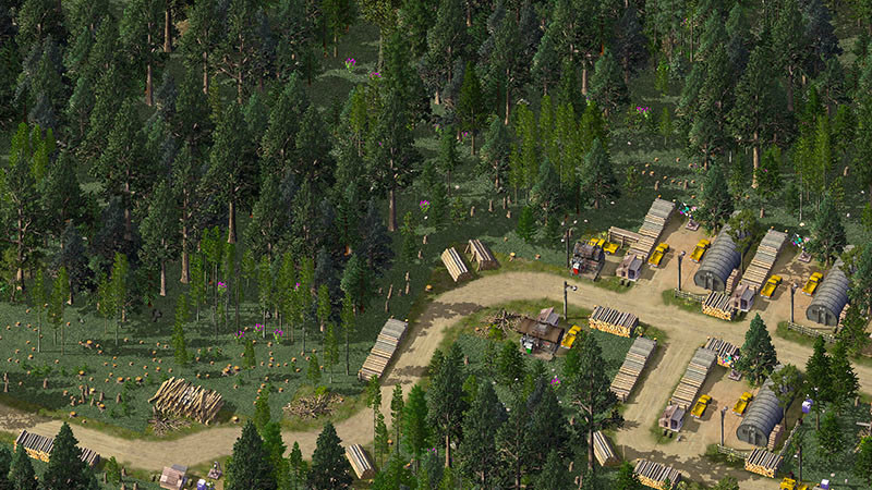 9%20Logging%20road%20from%20camp-L.jpg
