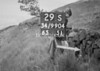 SD990429S, Man marking Ordnance Survey minor control revision point with an arrow in 1950s