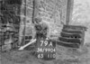 SD990479A, Man marking Ordnance Survey minor control revision point with an arrow in 1950s