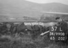 SD990857L, Man marking Ordnance Survey minor control revision point with an arrow in 1950s